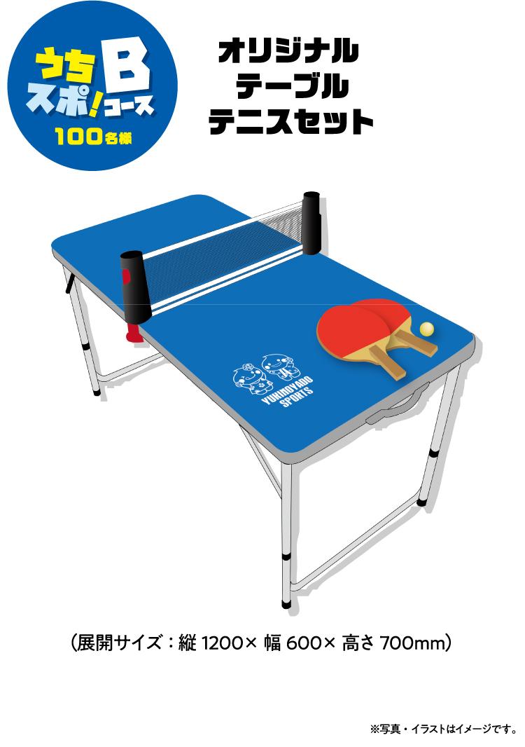 【Bコース】オリジナル テーブルテニスセット(展開サイズ:縦1200×幅600×高さ700mm)100名様